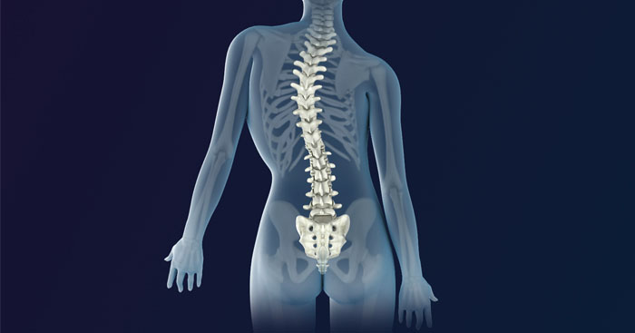 Do chiropractic adjustments hurt-Do chiropractic adjustments work